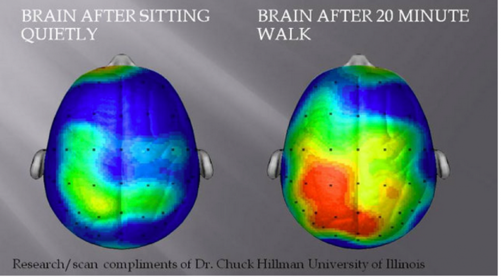 Taking a Break Does Improve Brain Efficiency