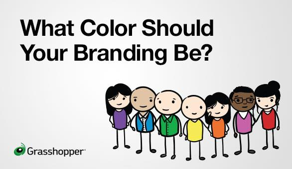 Take Our Color Quiz Here at Grasshopper