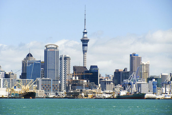 auckland working remotely