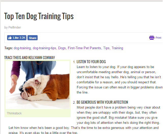 Dog Training Tips Example
